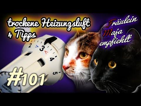Katzen und trockene Heizungsluft-4 Tipps-Fräulein Maja empfiehlt Folge 101