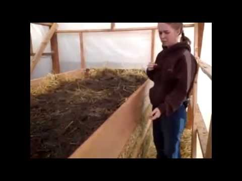 Make a Hotbed Greenhouse for Winter Gardening