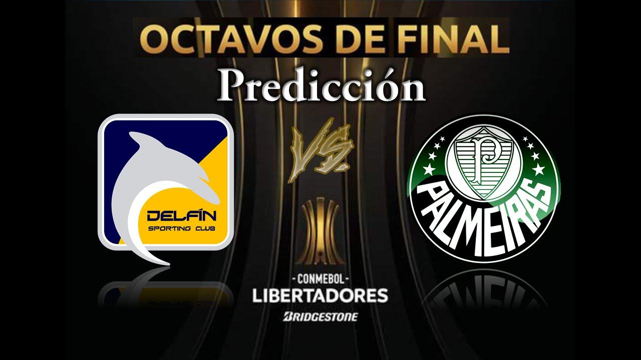 Predicción Delfín Vs. Palmeiras. Copa Libertadores 2020
