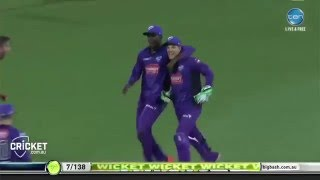 bbl 05 top 5 catches