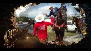 Cabalgata Celebrando Al Rey 2016