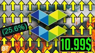 Should you invest in Elastos ($ELA) in 2019? *VERY IMPORTANT*