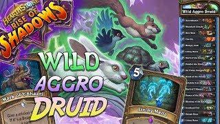 Wild Aggro Druid Deck   Rise of Shadows   Hearthstone