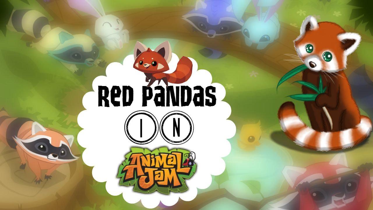 Red Pandas in Animal Jam - YouTube
