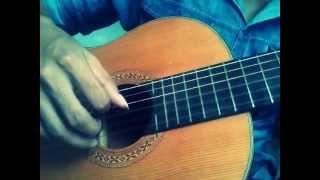 độc tấu guitar - bốn mùa thay lá - Trịnh Công Sơn