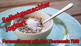 Joghurt selbstgemacht mit dem Thermomix TM6 - Fermentierung