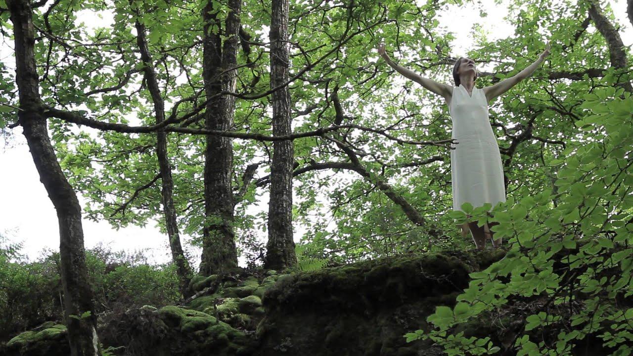 Chant pour les Arbres de Brocéliande, de Lucille aimée