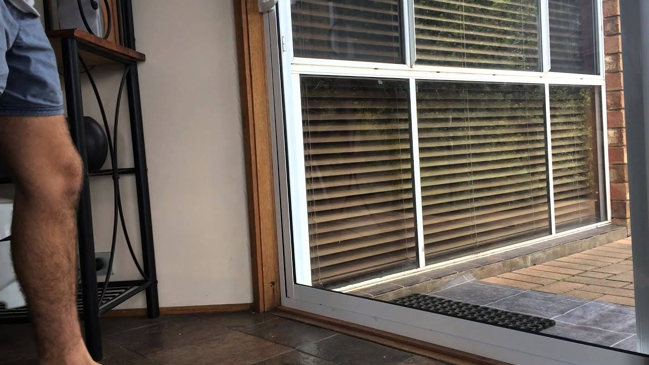 Cat Running Into Glass Door FAIL - YouTube