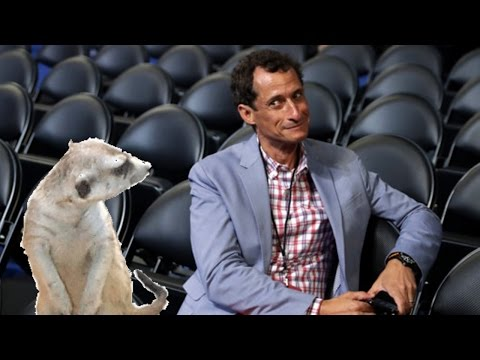 Anthony Weiner Caught Sexting Again: I'm Strong Like A Mongoose