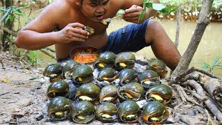 Cooking Snail bbq eat with Chili Sauce - Collect Snail in Ri...