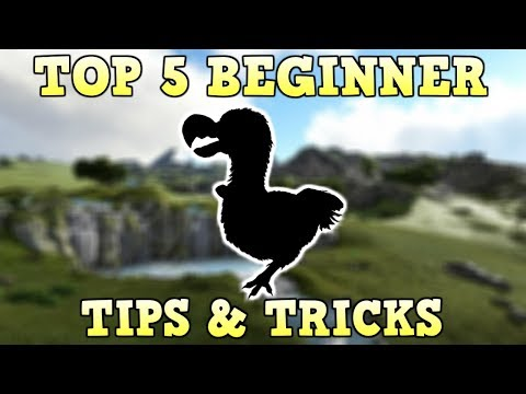 TOP 5 BEGINNER TIPS & TRICKS | ARK SURVIVAL EVOLVED