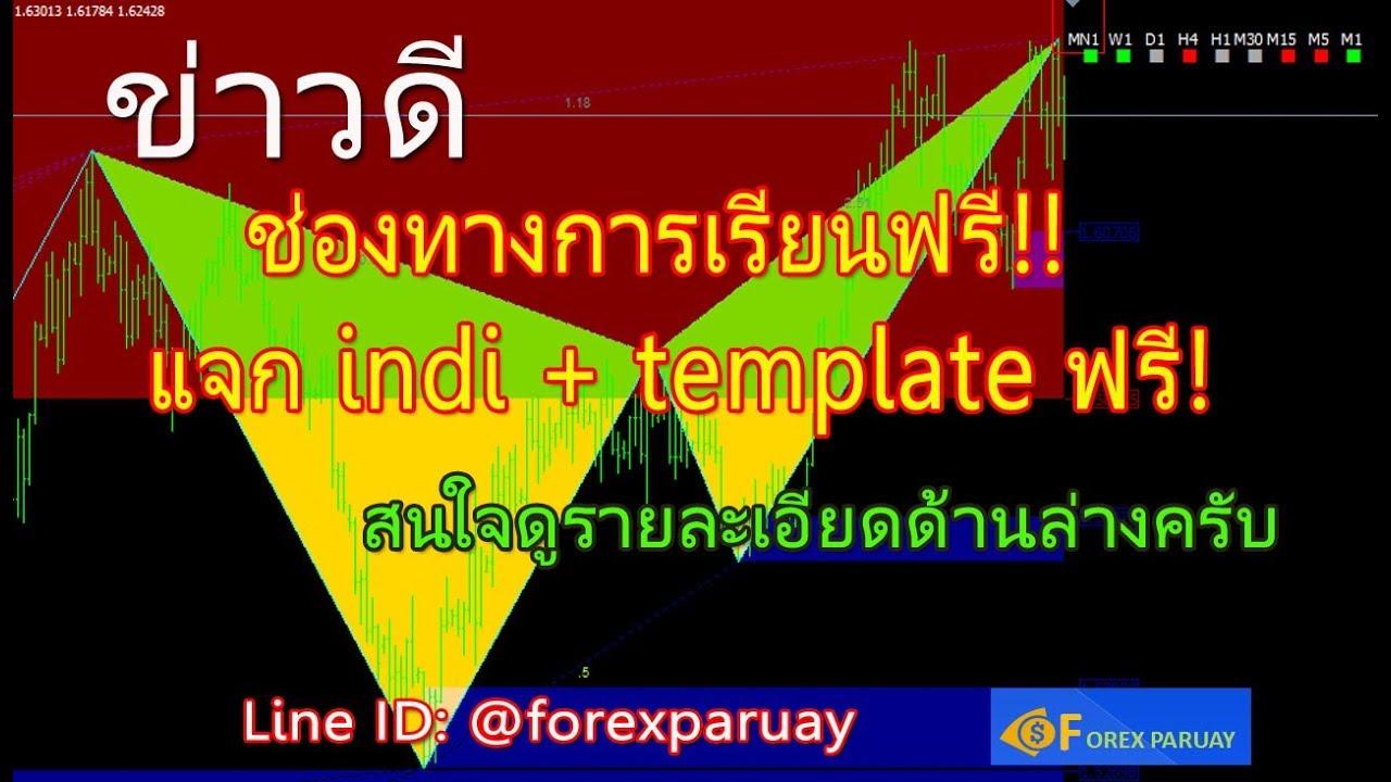 สอน forex ฟรี แจก indi และ template ฟรี