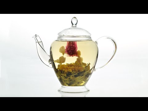 Brewing Two Dragon and a Pearl Flower Tea