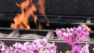 Вечный огонь Севастополь музыка free video(Video is distributed by Creative Commons Attribution license. Видео распространяется по лицензии Creative Commons Attribution. Eternal Flame Sapun ..., 2016-04-22T07:22:49.000Z)