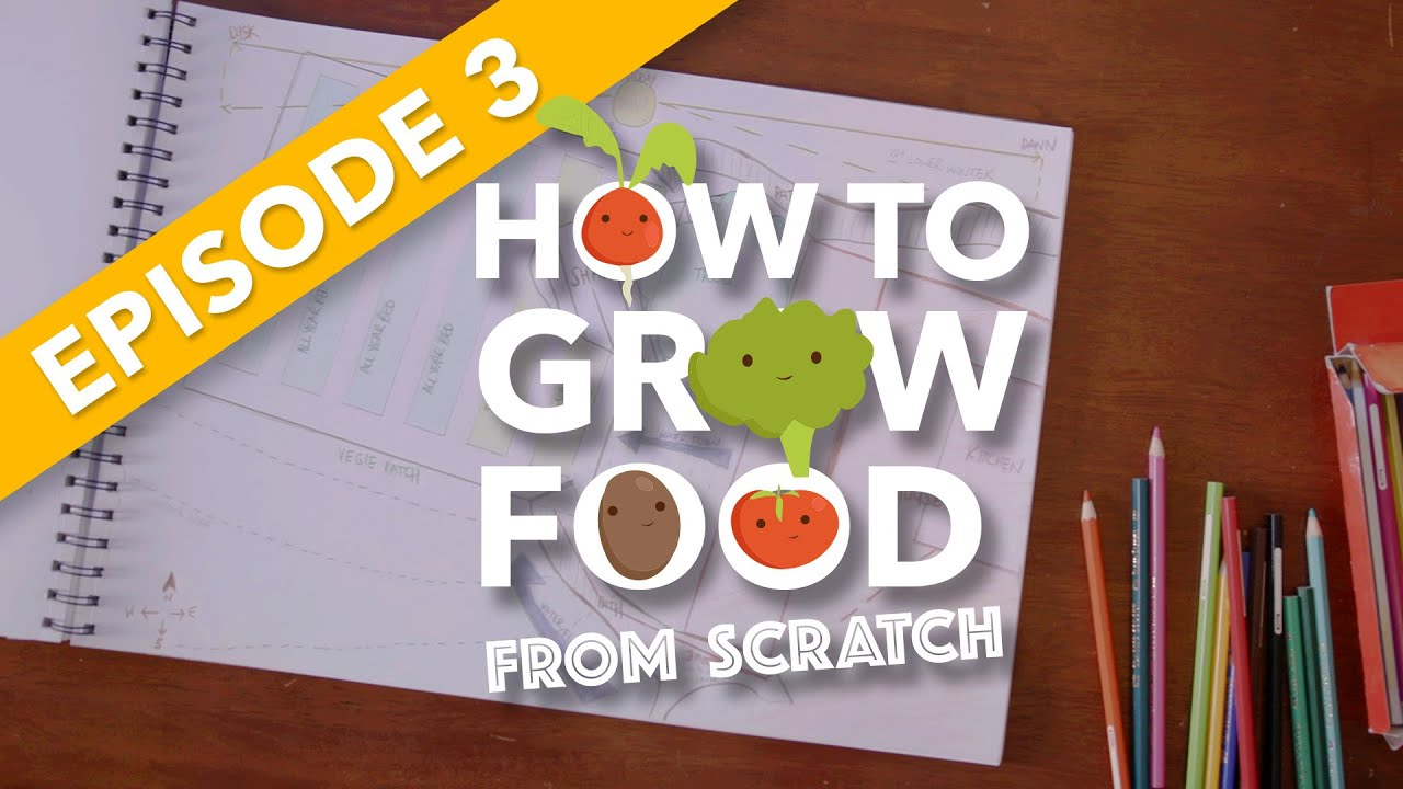 EP3. HOW TO GROW FOOD FROM SCRATCH: Planning Your Garden For Success