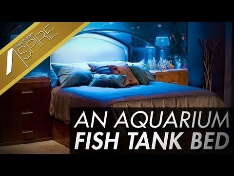 Sleep With The Fishes In A Custom Aquarium Bed Youtube
