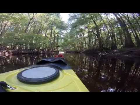 Kayaking the lumber river NC june 2014