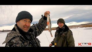 Ловим окуня на блесну на рыбалке без приколов не обошлось