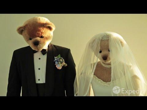 Teddy Bear Museum - City Video Guide