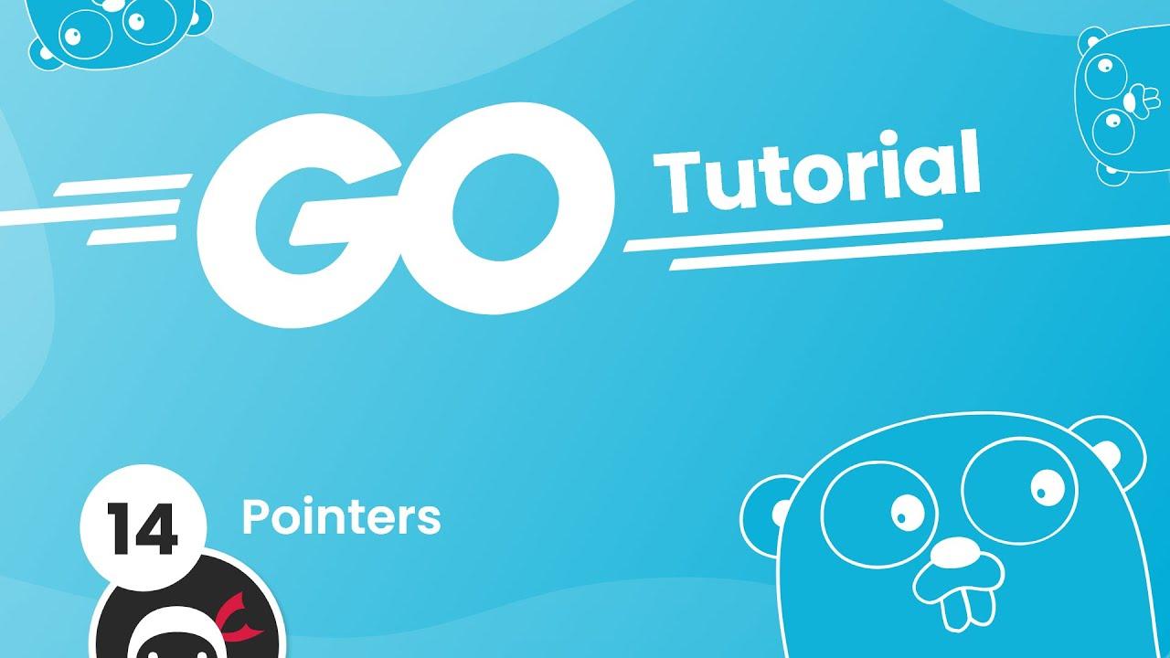 Go (Golang) Tutorial #14 - Pointers