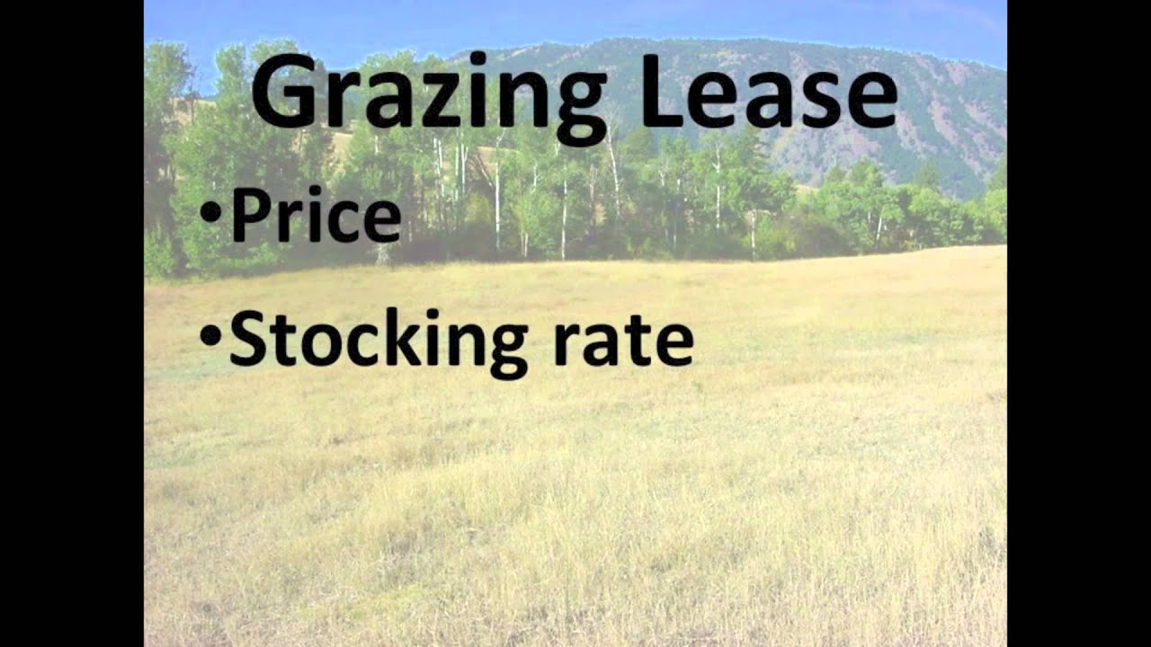 Pasture Lease Agreements Youtube