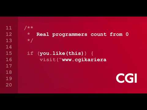 CGI real programmers