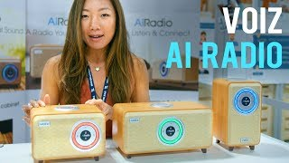 VOIZ AI Radio hands-on @CES 2019