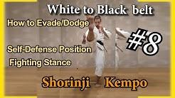 8.1 Практика Сёриндзи Кэмпо. Как правильно делать уклоны. Позиция самообороны, боевые стойки.
