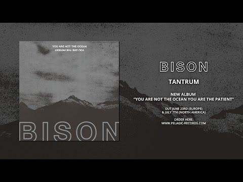 BISON - Tantrum
