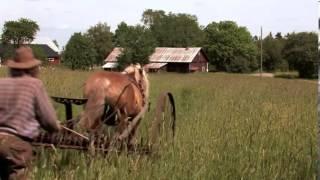 Hästmannen - sista striden  -  Trailer