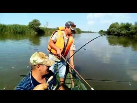 Рыбалка в Маково.  Астраханская обл.  Жерех, судак, сом, сазан, щука все за одну рыбалку.