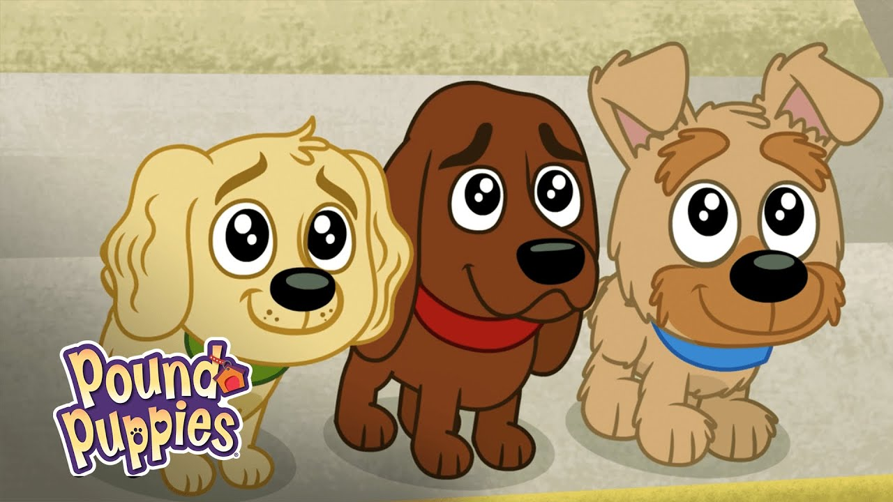 Pound Puppies Charming Puppies