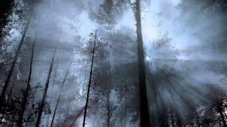 Wardruna - Bjarkan (2)