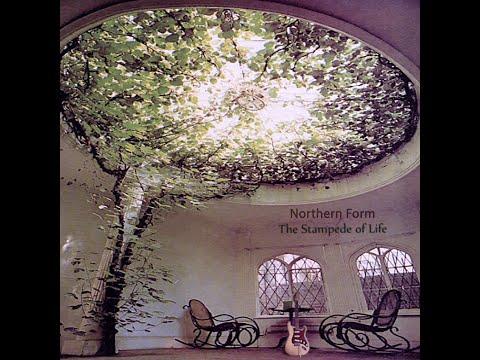 Andrew Rothschild  - Let Go
