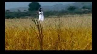 Trailer of Pyar Kar Mehandi Thumbnail