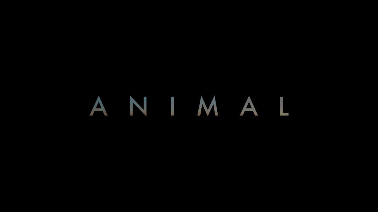 Cyril Dion appelle à soutenir « Animal », son prochain film