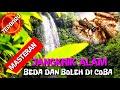 Suara Jangkrik Terbaru Cocok Untuk Masteran Murai Batu Kacer Cucak Ijo Dll  Mp3 - Mp4 Download
