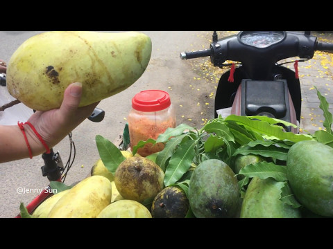 Asian Street Food, Cambodian Street Food, Food Compilation In The City