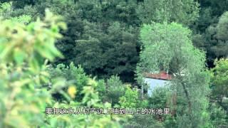 二更[在北京郊外山谷里,竟然还有人能过着这样的山野隐居] thumbnail