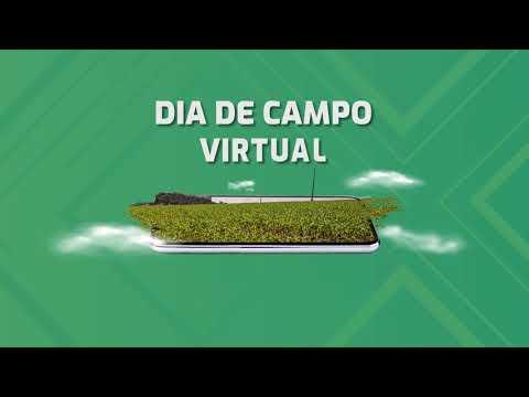 DIA DE CAMPO VIRTUAL | DKB 265PRO