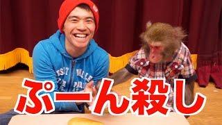 【メインチャンネル】https://www.youtube.com/user/pookieskaimie 瀬戸...