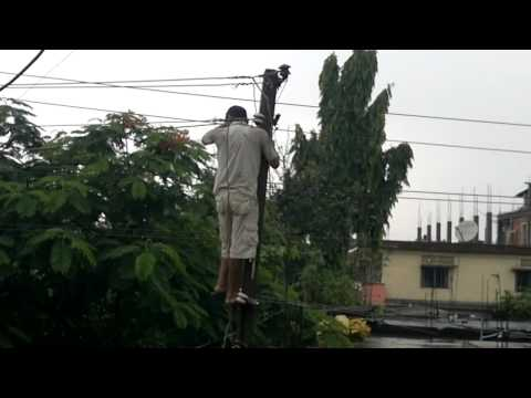 Assam State Electricity Board (ASEB) on duty worker