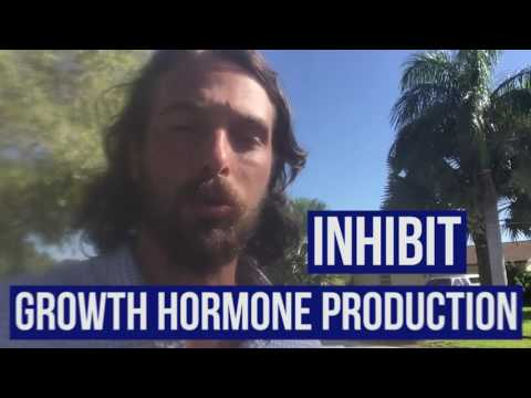 Does Training Stop Growth in Teenagers? (Growth Hormone)