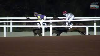 Vidéo de la course PMU PRIX HEULDRO