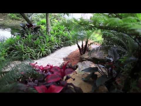Natural Landscape Design in Miami 3
