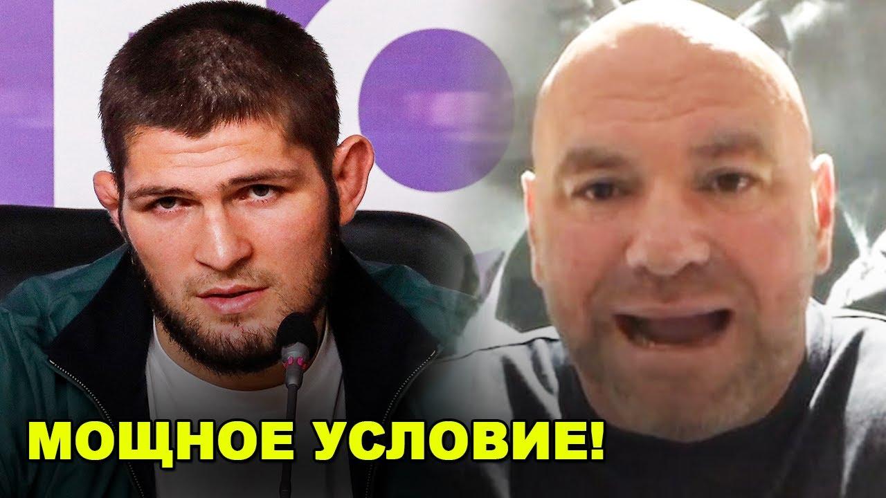 УДИВИЛ ВСЕХ! Хабиб поставил мощное условие / Срочное заявление Нурмагомедова! - скачать с YouTube бесплатно