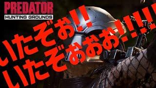 【Predator: Hunting Grounds】出てこいクソッタレェェェ!!!【神田笑一/にじさんじ】