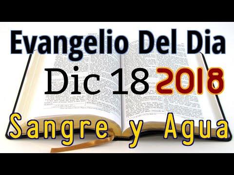 Evangelio del Dia- Martes 18 Diciembre 2018- Festejar la Navidad- Sangre y Agua