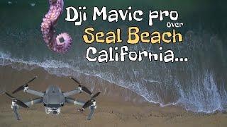 Dji Mavic Pro Drone Over Seal Beach California.