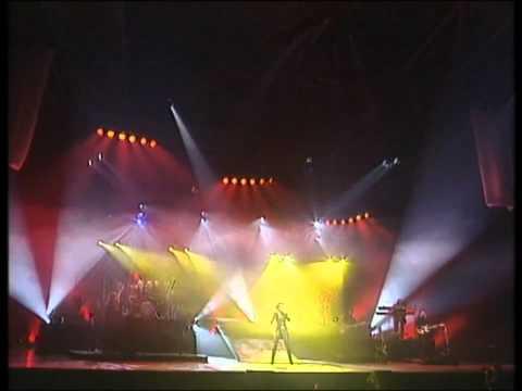 Celine Dion - The Power Of Love [Live A Paris 1995]